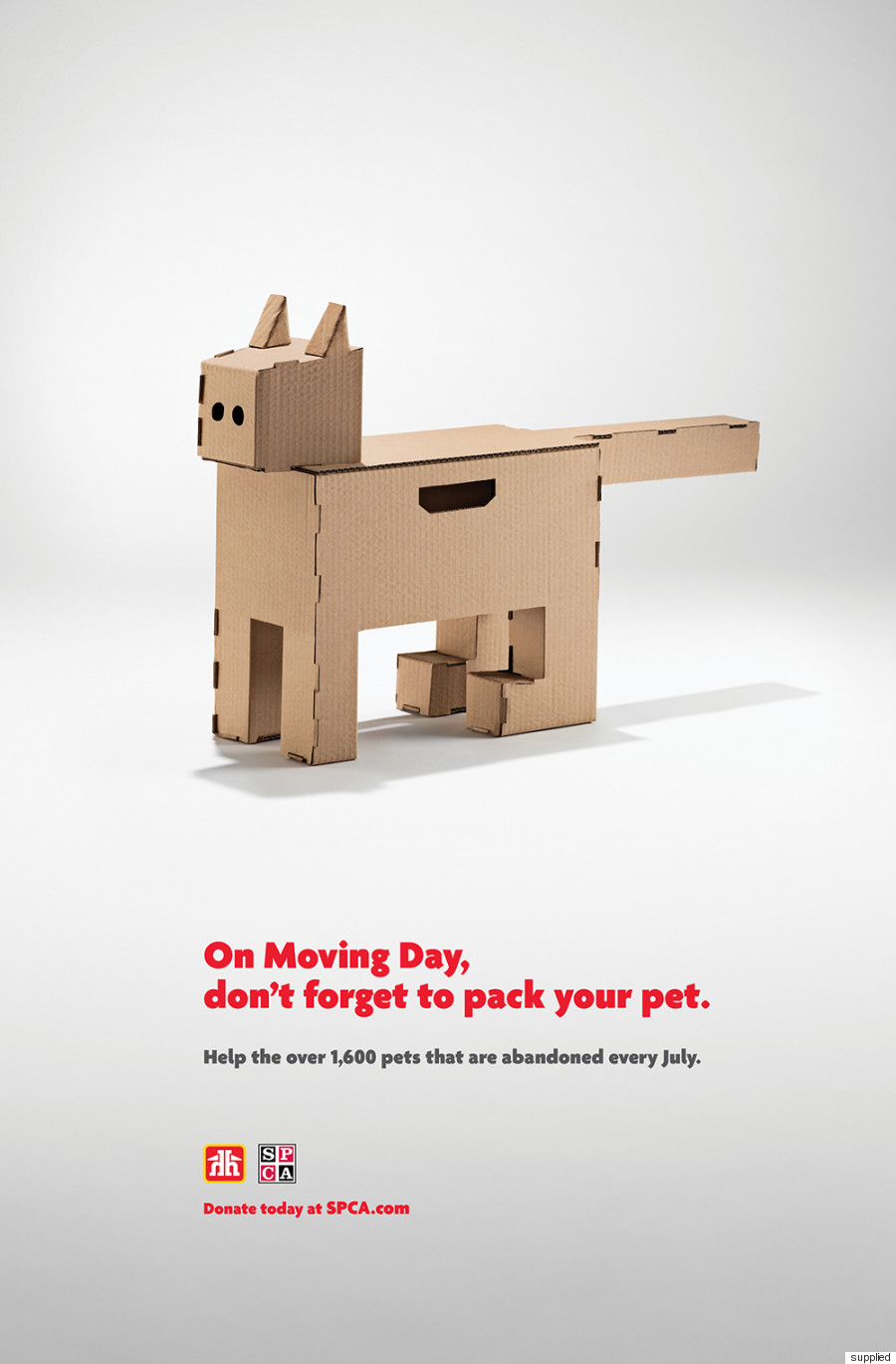 pet moving box