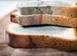 Ekelfunde in Bäckereien: Schaben und Kot im Brot - und Verbraucher erfahren nichts