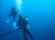 Seit 25 Jahren taucht ein Mann in den Pazifik hinab - um dort ein gruseliges Wesen zu treffen
