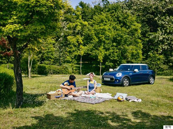 picnicsocarps