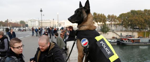 FRENCH POLICE POLICE DOG