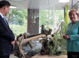 Wieso dieses Bild von Merkel und einem Panda eine Machtdemonstration ist