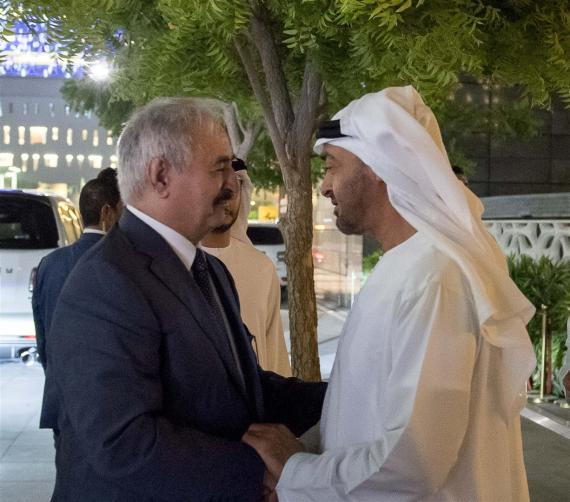 mohammed bin zayed hafer