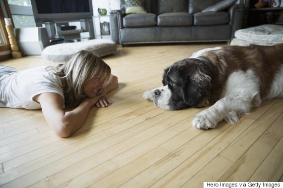 big dog owner