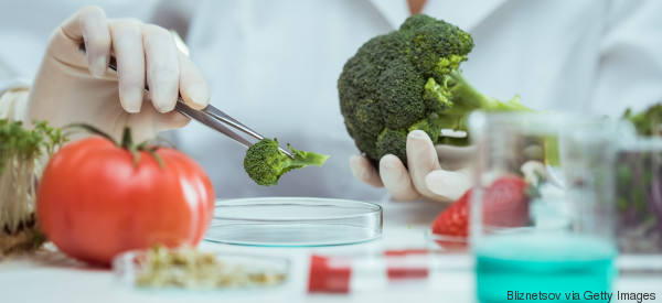 Warum wir eine Lebensmittelrevolution brauchen