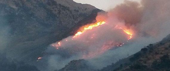 FIRE ALGERIA