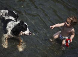 Warum jedes Kind ein Haustier haben sollte