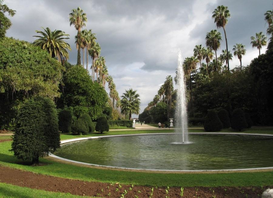 algiers garden