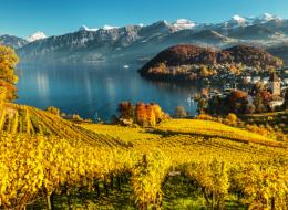 رحلة لا تنسى إلى قلب أجمل المدن السويسرية.. لا تفوتها