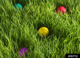 Colorado Egg Hunt