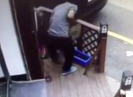 길냥이 살해한 20대 남자에게 내려진 처벌(영상)