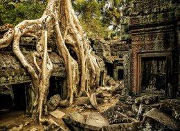 Forscher finden heraus, was eine ganze Stadt in Kambodscha schleichend ausgelöscht hat