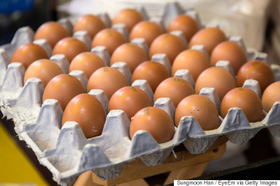 egg korea