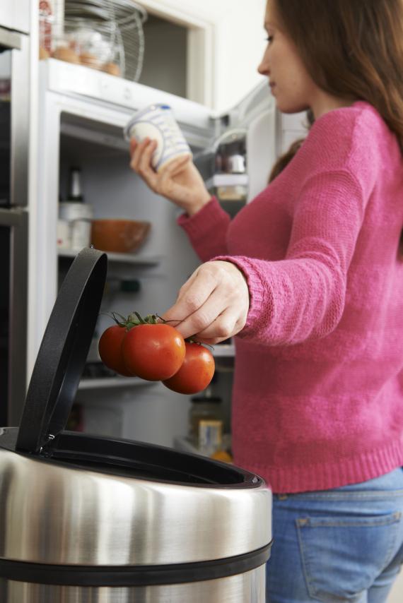 rotten tomatoes fridge