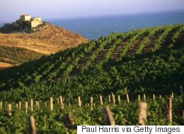 Κρασί 6.000 ετών ανακαλύφθηκε στη Σικελία