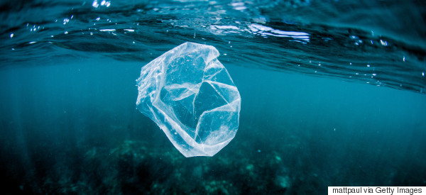 Green Party And Ex-Asda Boss Both Call For Ban On Single-Use Plastics