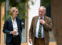 Die AfD kopiert den FDP-Wahlspot - und scheitert kläglich