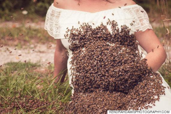abeille femme enceinte