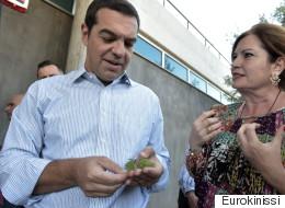 Επίσκεψη Τσίπρα στην Apivita: Να αξιοποιήσουμε τα συγκριτικά πλεονεκτήματα της ελληνικής γης