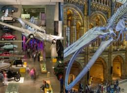 Το Μουσείο Φυσικής Ιστορίας και το Μουσείο Επιστήμης του Λονδίνου είχαν τον καλύτερο καβγά που έχει γίνει στο Twitter