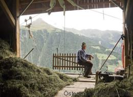 In Österreich werden bis zu 100 Millionen Euro Rente unterschlagen