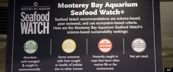 WHOLE FOODS SUSTAINABLE SEAFOOD