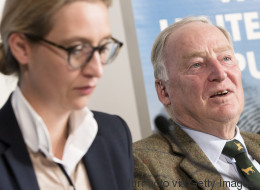 Die AfD gewinnt schneller an Macht als die FPÖ: So blickt eine österreichische Journalistin auf den deutschen Wahlkampf