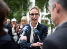Meinungsforscher: AfD wird sich nach der Wahl im Bundestag selbst