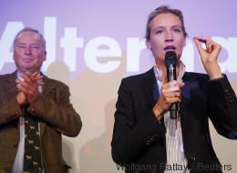 AfD im Bundestag: 15 neue Abgeordnete, die sich bereits einen Namen gemacht haben