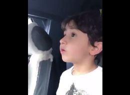 طفل مصري يشرح أدق التفاصيل عن أنظمة الطائرة! شاهِد كيف يوضح ذلك بشكل احترافي