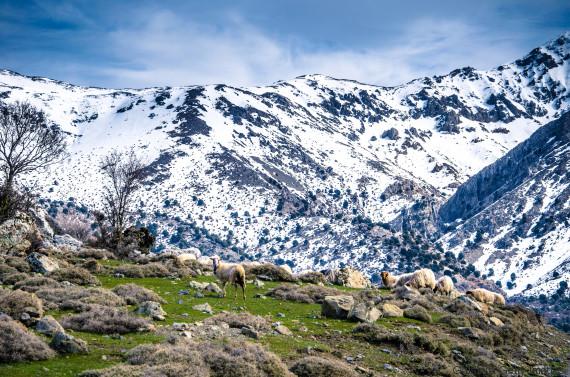 Οι πρώτοι σταθμοί συνεχούς μέτρησης του ύψους του χιονιού στην Ελλάδα εγκαταστάθηκαν στην Κρήτη
