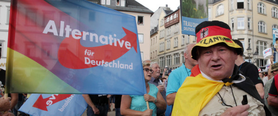 AFD SUPPORTER ELECTION