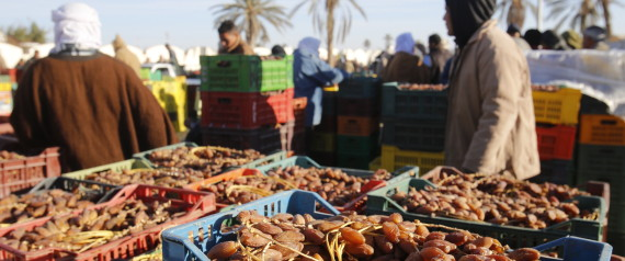 HARVEST DATES TUNISIA