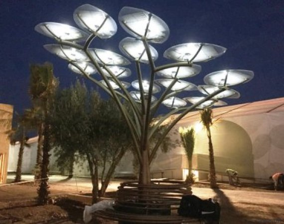 solar tree marrakech