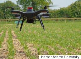 Αυτόματο ρομποτικό αγρόκτημα: Από το φύτεμα ως τη συγκομιδή χωρίς ανθρώπινο χέρι