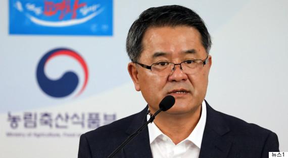 ant korea