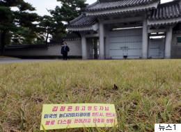 청와대 잔디밭에서 북한 '삐라'가 발견됐다 (사진)