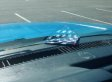 Polizist hält ahnungslosen Autofahrer auf - dann fällt sein Blick aufs Armaturenbrett