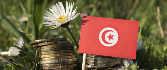 INVESTMENT TUNISIA
