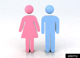 attraction gender roles and homosexuality an This study explored the role of gender, ethnicity, religiosity, and sexual attraction in adolescents' acceptance of same-sex sexuality and gender non-conformity.