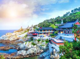 يوجد بها أسرع إنترنت في العالم.. رحلة سريعة إلى كوريا الجنوبية.. شاهد