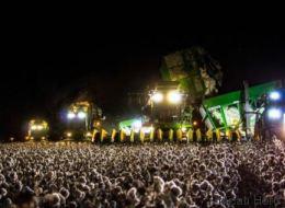 Αυτή η οφθαλμαπάτη έχει τρελάνει το διαδίκτυο: Όλοι πιστεύουν ότι πρόκειται για συναυλία αλλά κάνουν λάθος