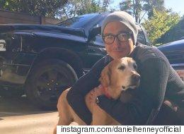 다니엘 헤니가 한국 개농장에서 구조된 개를 입양했다