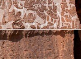 منحوتات حجرية بالسعودية تكشف حقيقة مؤلمة عن علاقة الكلاب بالبشر.. الأجداد الأوائل استغلوها في أعمال مخيفة