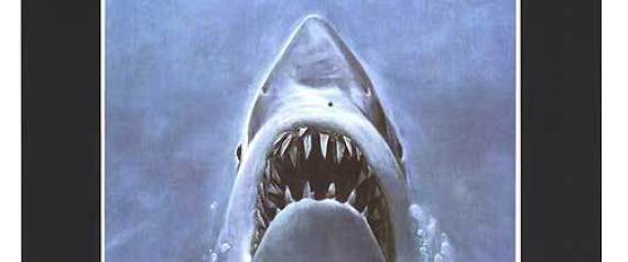 Doubling Down on Shark Conservation as <i>Jaws</i> Turns 40...