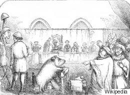 قضاة وشهود ومحامون والمتهم خنزير يواجه عقوبة الإعدام.. محاكمات جادة للحيوانات في العصور الوسطى