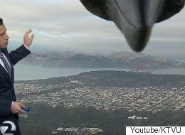 기상캐스터가 생방송 중 거대한 새의 공격을 받다