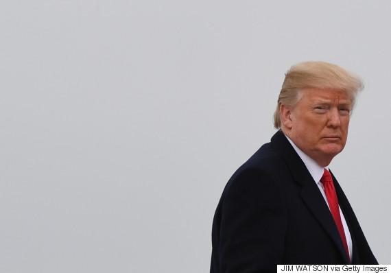 donald trump look