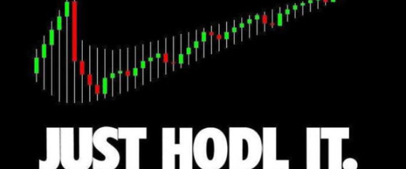 JUST HODL IT