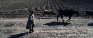 Tunisia Rural